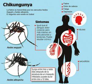 La fiebre chikungunya