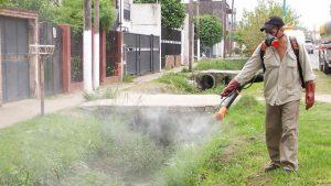 Alergia a las picaduras de mosquitos en niños prevención