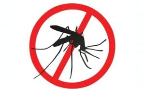 Alergia a las picaduras de mosquitos en niños