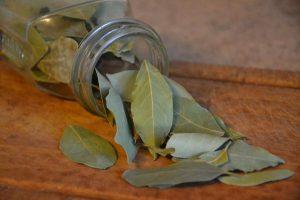 Usar plantas slvestres para ahuyentar las cucarachas