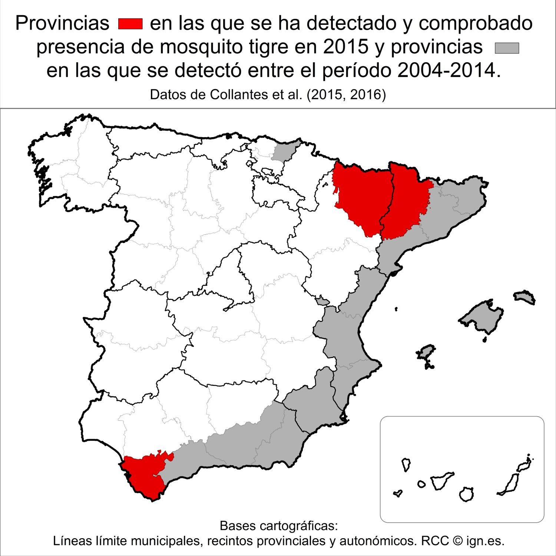 Mosquito-tigre-en-España3