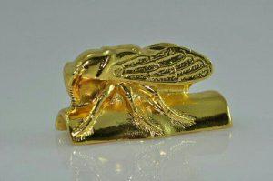amuletode-chicharra