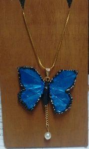 mariposa azul peligro de extinción
