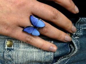mariposa azul características y significado