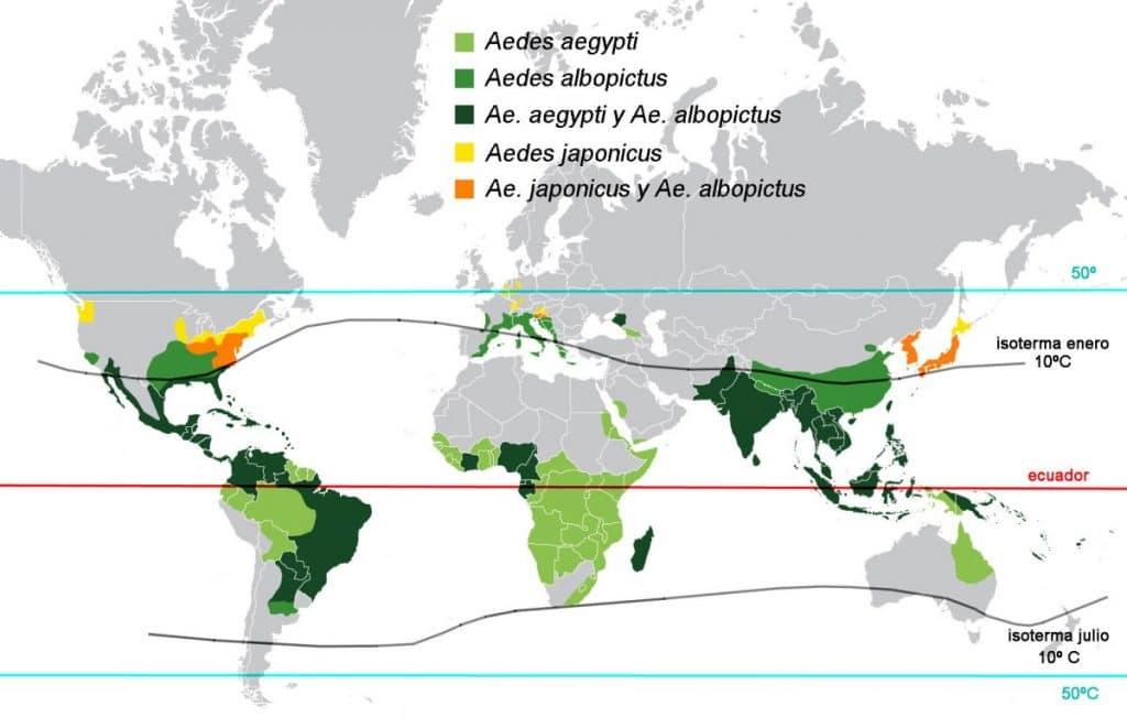distribución geográfica del mosquito aedes aegypti o mosquito del dengue fiebre amarilla