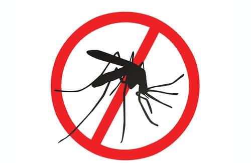 prevención del mosquito aedes aegypti