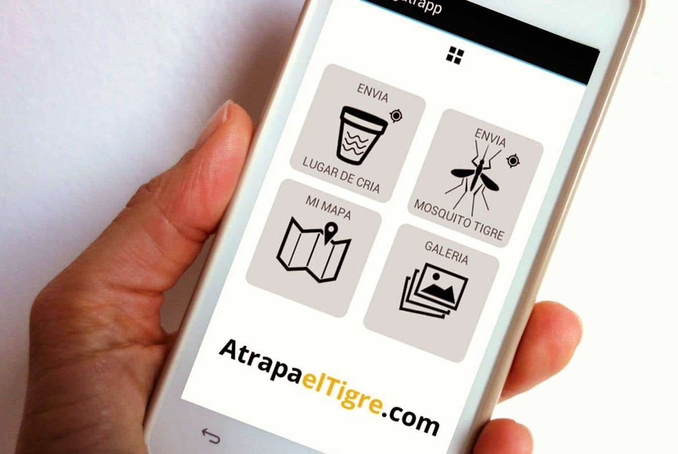 App usada por muchos usuarios españoles para hacer frente a la plaga del mosquito tigre.
