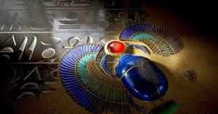 Escarabajo Egipcio Conoce Su Significado Y Mucho Más