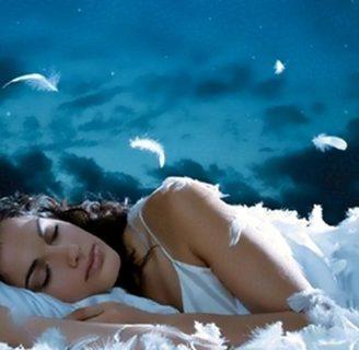 Soñar con cucarachas: Conoce el simbolismos de estos sueños.