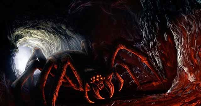 Arañas-gigantes-del-congo3