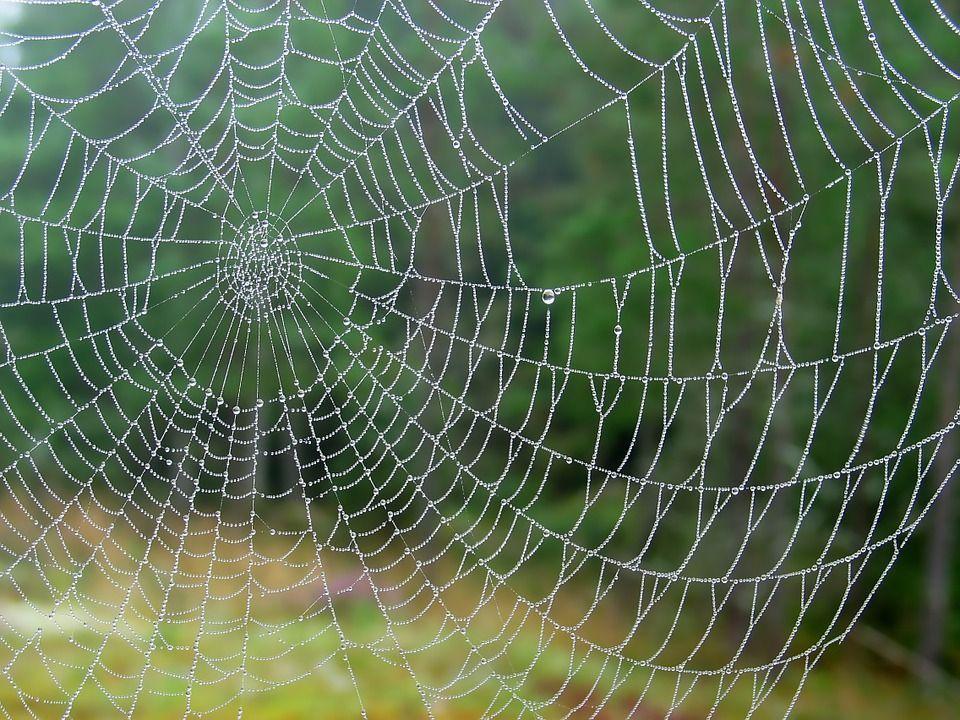 chaleco-antibalas-tela-de-araña