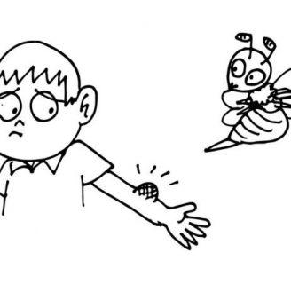 Qué hacer cuando te pica una abeja.