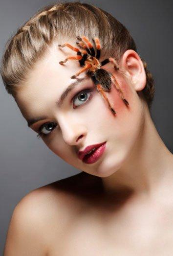 picaduras-de-araña-1